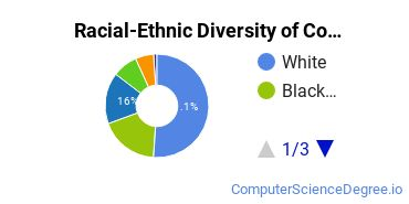 Racial-Ethnic Diversity of Computer Information Systems Majors at University of Maryland Global Campus