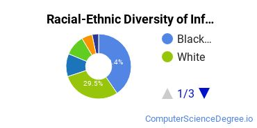 Racial-Ethnic Diversity of Information Science Majors at University of Maryland Global Campus