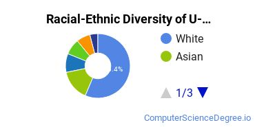 Racial-Ethnic Diversity of U of Michigan Undergraduate Students