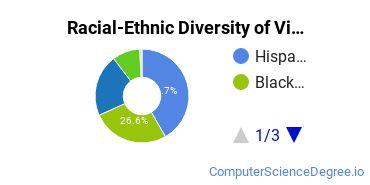 Racial-Ethnic Diversity of Vista College Undergraduate Students