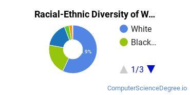 Racial-Ethnic Diversity of Wayne Community College Undergraduate Students