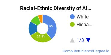 Racial-Ethnic Diversity of AI Students with Bachelor's Degrees