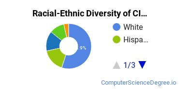 Racial-Ethnic Diversity of CIS Associate's Degree Students
