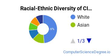 Racial-Ethnic Diversity of CIS Students with Bachelor's Degrees