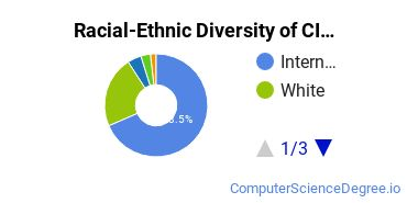 Racial-Ethnic Diversity of CIS Doctor's Degree Students