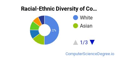 Racial-Ethnic Diversity of Computer and Information Sciences Students with Bachelor's Degrees