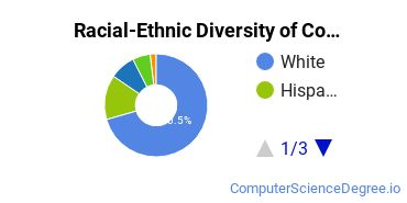 Racial-Ethnic Diversity of Computer and Information Sciences Basic Certificate Students