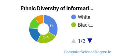 Informatics Majors in AZ Ethnic Diversity Statistics