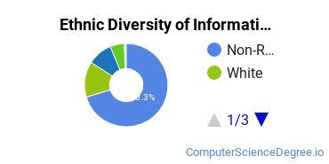 Informatics Majors in CA Ethnic Diversity Statistics