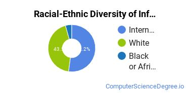Racial-Ethnic Diversity of Informatics Doctor's Degree Students
