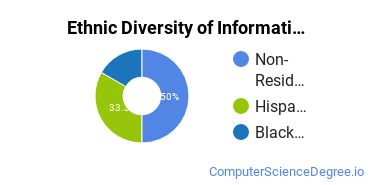 Informatics Majors in FL Ethnic Diversity Statistics