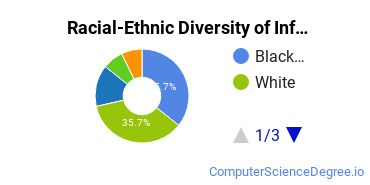 Racial-Ethnic Diversity of Informatics Graduate Certificate Students