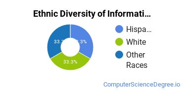 Informatics Majors in IL Ethnic Diversity Statistics