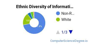 Informatics Majors in MA Ethnic Diversity Statistics