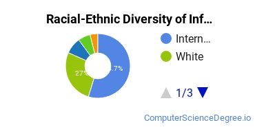 Racial-Ethnic Diversity of Informatics Master's Degree Students