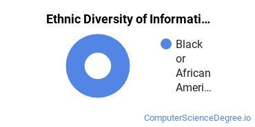 Informatics Majors in MN Ethnic Diversity Statistics