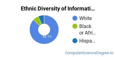Informatics Majors in MO Ethnic Diversity Statistics