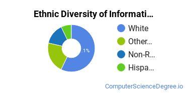 Informatics Majors in NE Ethnic Diversity Statistics