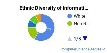 Informatics Majors in PA Ethnic Diversity Statistics