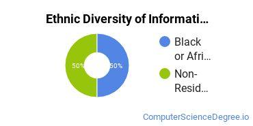 Informatics Majors in SC Ethnic Diversity Statistics