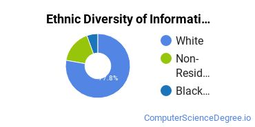 Informatics Majors in TN Ethnic Diversity Statistics