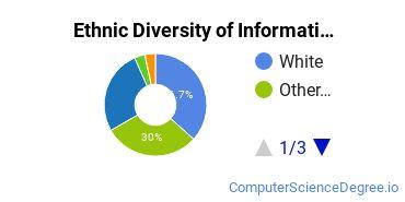 Informatics Majors in VA Ethnic Diversity Statistics