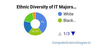 Information Technology Majors in AL Ethnic Diversity Statistics