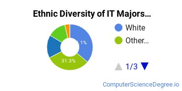 Information Technology Majors in AZ Ethnic Diversity Statistics