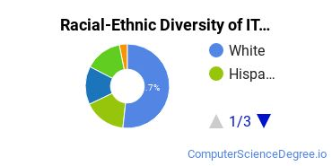 Racial-Ethnic Diversity of IT Associate's Degree Students