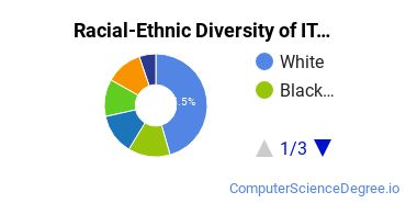 Racial-Ethnic Diversity of IT Students with Bachelor's Degrees