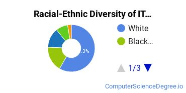 Racial-Ethnic Diversity of IT Basic Certificate Students