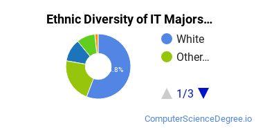 Information Technology Majors in CO Ethnic Diversity Statistics