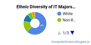 Information Technology Majors in CT Ethnic Diversity Statistics