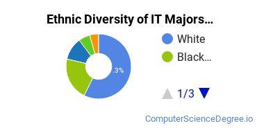 Information Technology Majors in DE Ethnic Diversity Statistics