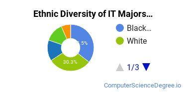 Information Technology Majors in DC Ethnic Diversity Statistics
