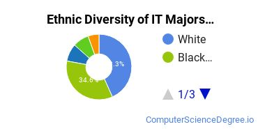 Information Technology Majors in GA Ethnic Diversity Statistics