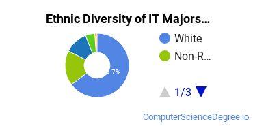 Information Technology Majors in ID Ethnic Diversity Statistics
