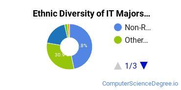 Information Technology Majors in KY Ethnic Diversity Statistics