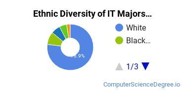Information Technology Majors in LA Ethnic Diversity Statistics