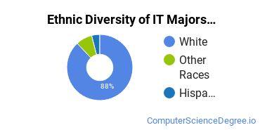 Information Technology Majors in ME Ethnic Diversity Statistics