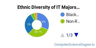 Information Technology Majors in MD Ethnic Diversity Statistics