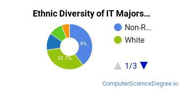 Information Technology Majors in MA Ethnic Diversity Statistics