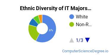 Information Technology Majors in MO Ethnic Diversity Statistics