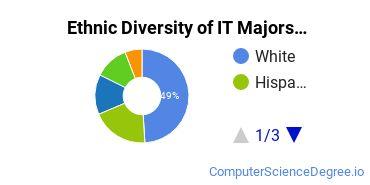 Information Technology Majors in NE Ethnic Diversity Statistics