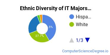Information Technology Majors in NM Ethnic Diversity Statistics