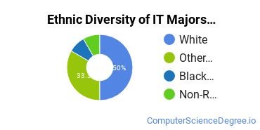 Information Technology Majors in ND Ethnic Diversity Statistics