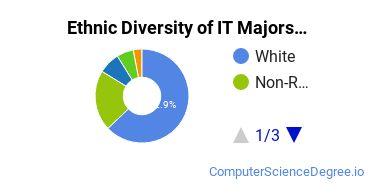 Information Technology Majors in OH Ethnic Diversity Statistics