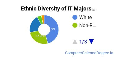 Information Technology Majors in OK Ethnic Diversity Statistics