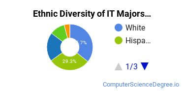 Information Technology Majors in TX Ethnic Diversity Statistics