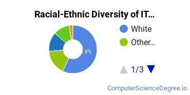 Racial-Ethnic Diversity of IT Undergraduate Certificate Students